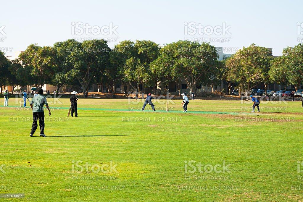 Playing cricket royalty-free stock photo
