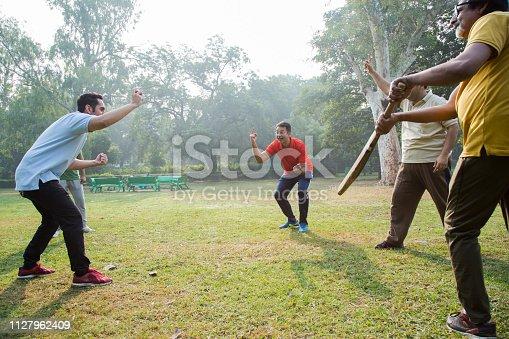Seniors, adult, match, cricket, sport, outdoors, park, day, ball, holidays,