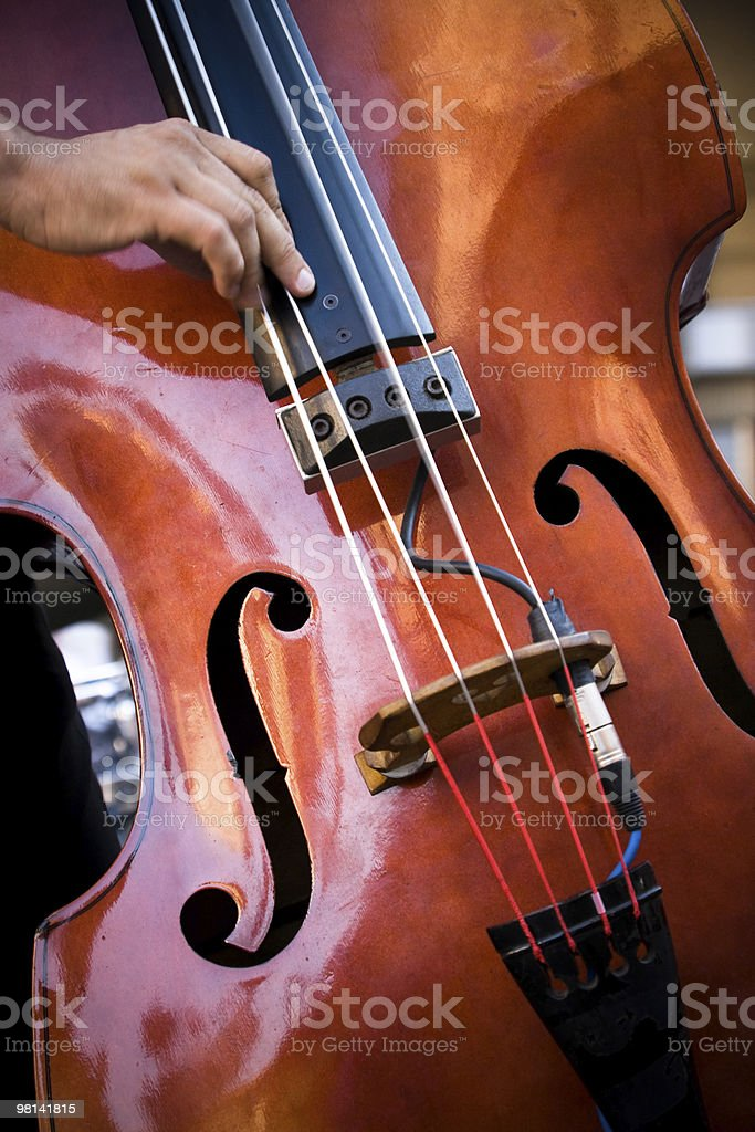 Playing Double Bass royalty-free stock photo