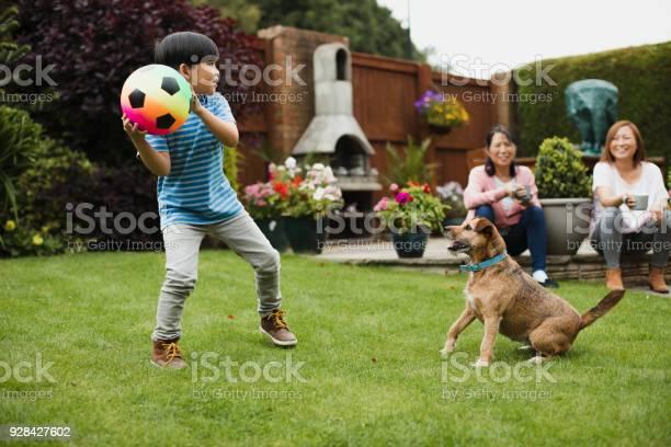 Playing fetch in the garden picture id928427602?b=1&k=6&m=928427602&s=612x612&h=6pyuko4gvdovwaukkhtmcnghe4y9fjanaogwvheorzi=