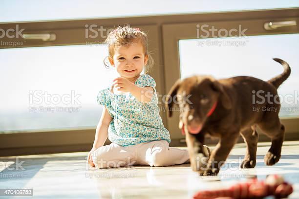 Playing fetch with my puppy picture id470406753?b=1&k=6&m=470406753&s=612x612&h=oi9c0xqqzjzw5inw9nqf9vlnrg3wrzbrsltvwgnwgpw=