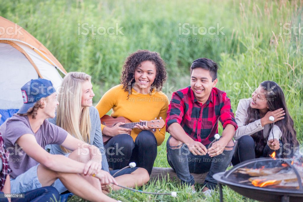 A multi-ethnic group of young adults are hanging out while camping....