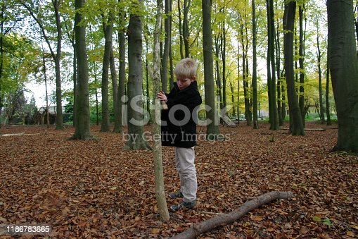515278306 istock photo Playing in the forest 1186783665