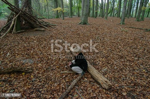 515278306 istock photo Playing in the forest 1186783691