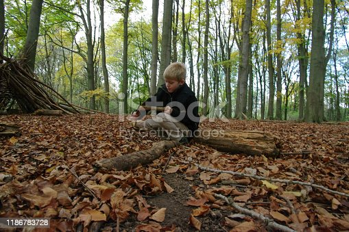 515278306 istock photo Playing in the forest 1186783728