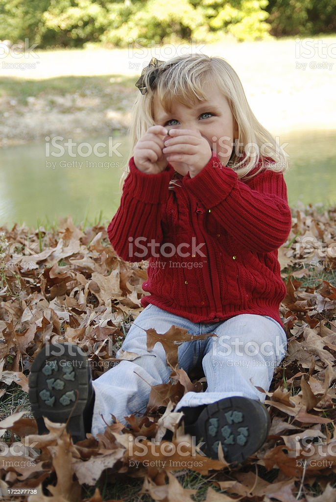 Playing in the Leaves stock photo
