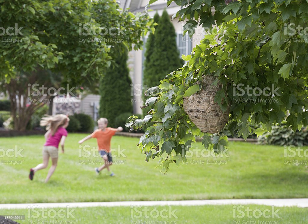 Playing near Danger royalty-free stock photo