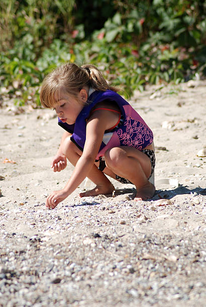 playing on the shoreline - little girl picking up sea shells at the beach stock pictures, royalty-free photos & images