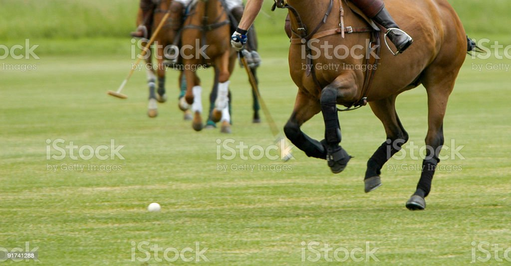 Playing polo stock photo