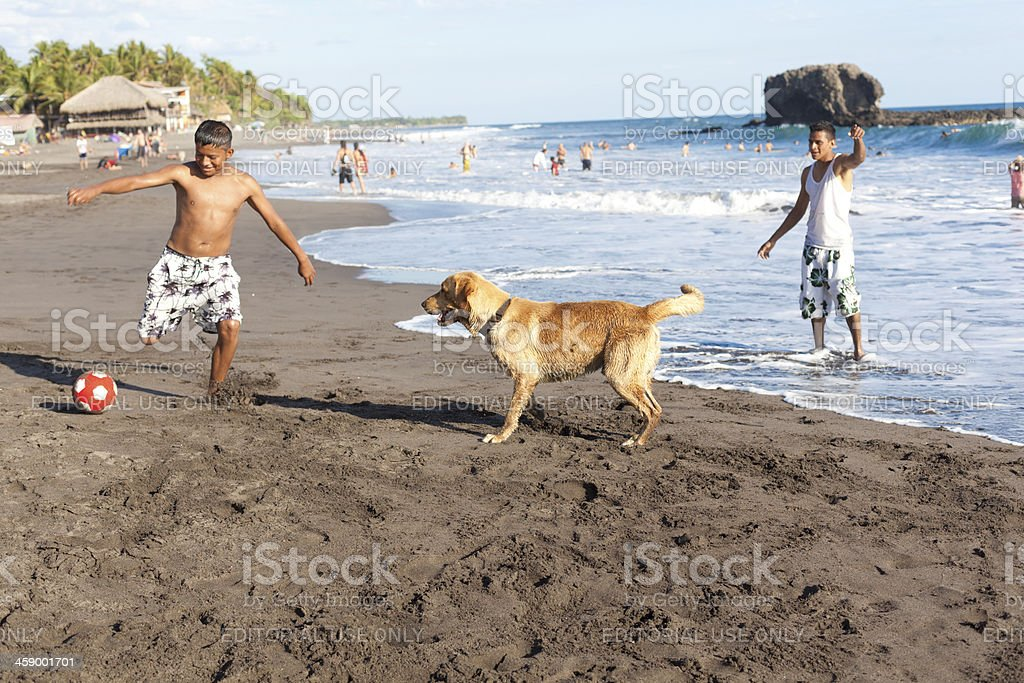 Playing soccer with dog stock photo