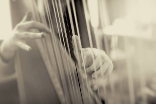 playing the harp - harpist stock photos and pictures