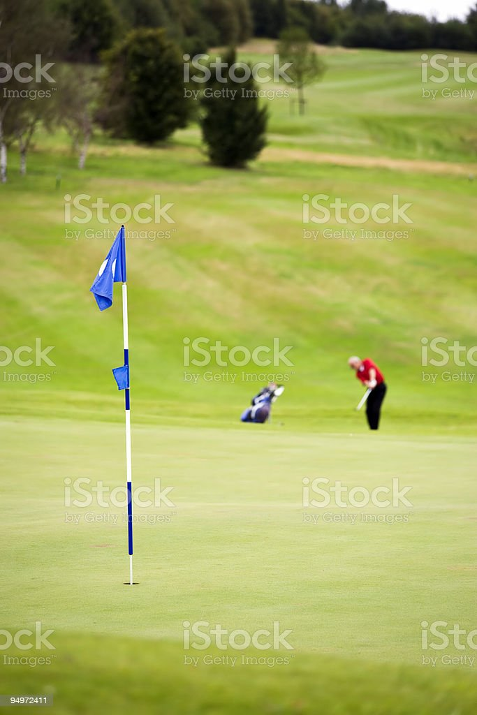 playing to the green royalty-free stock photo