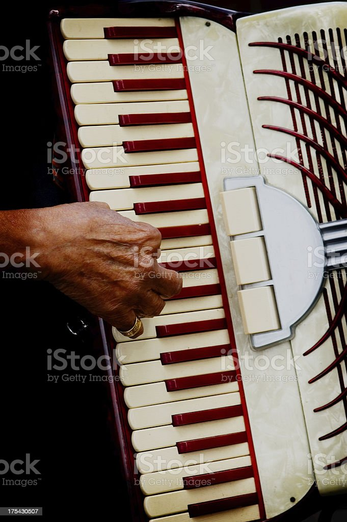 Playing Vintage Accordion - Lomo royalty-free stock photo