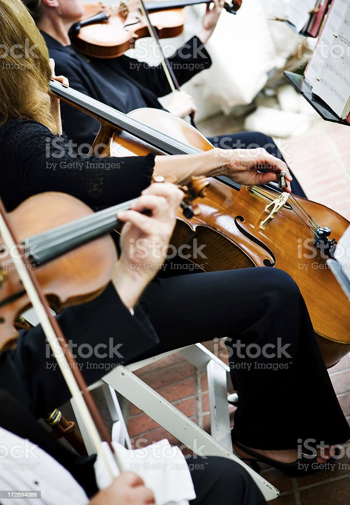 playing violin and chello stock photo