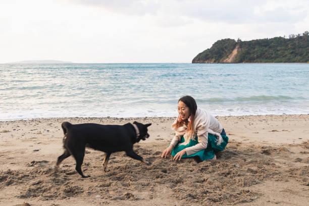 Playing with a Dog – zdjęcie