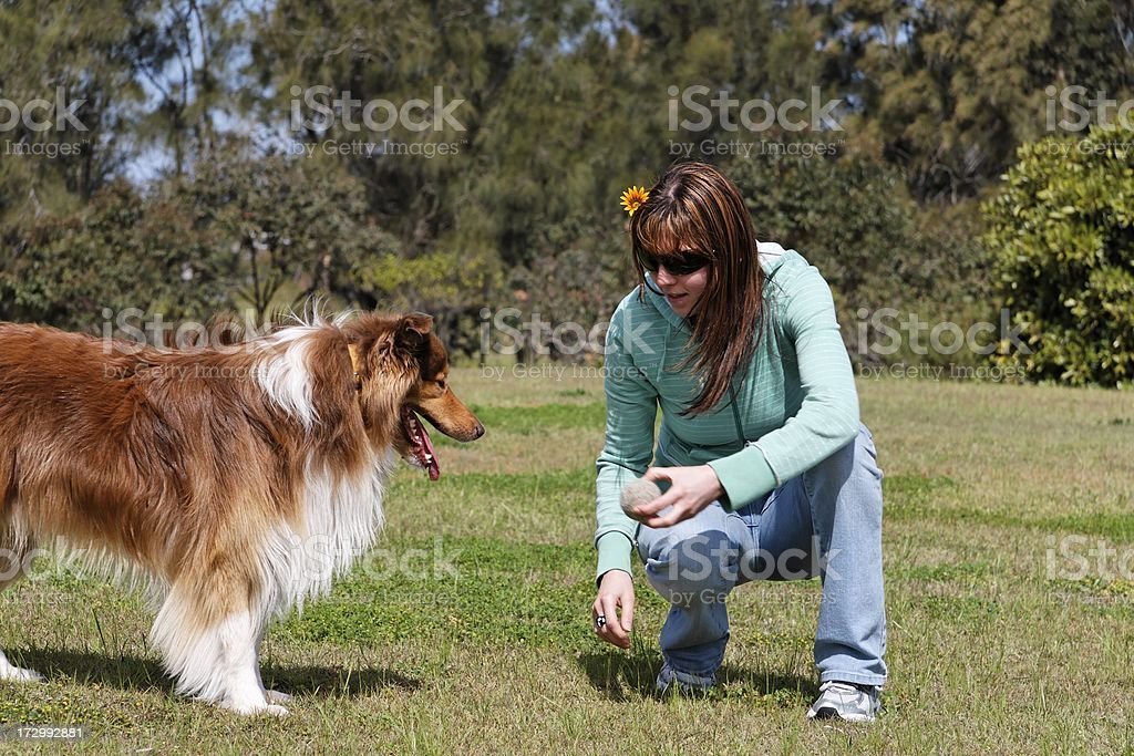 Playing with a dog royalty-free stock photo