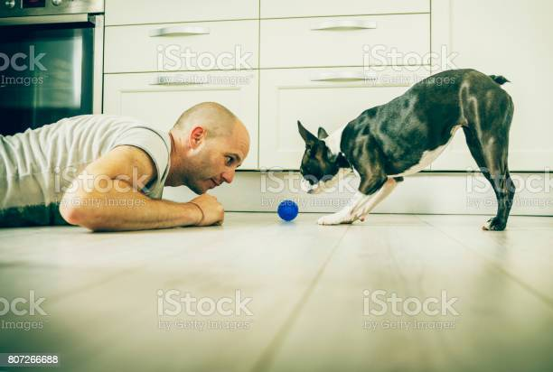 Playing with ball picture id807266688?b=1&k=6&m=807266688&s=612x612&h=ynpwf0e9rbtmpmf1qqxqmrlqw2bucrbbwgssz4ljftm=