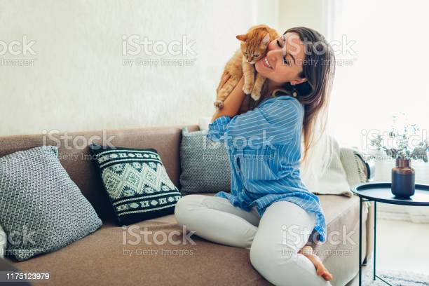 Playing with cat at home young woman sitting on couch and hugging pet picture id1175123979?b=1&k=6&m=1175123979&s=612x612&h=yjnrginx5xy8s8ttvgpq0evts0tchm1jn4asj5kfv m=