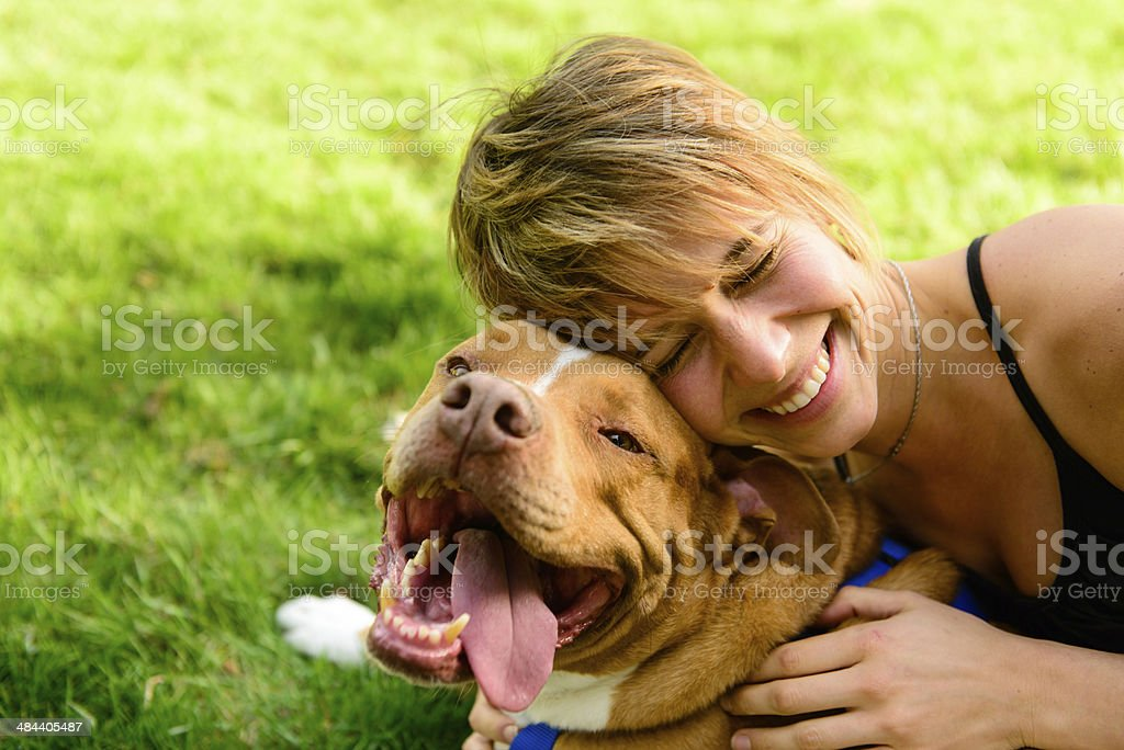 Playing with Happy Dog stock photo