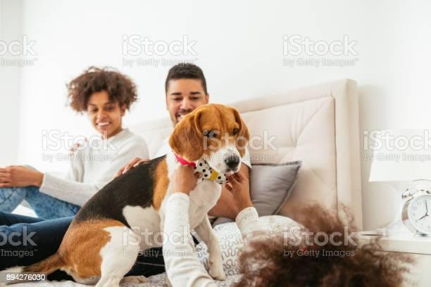 Playing with her dog picture id894276030?b=1&k=6&m=894276030&s=612x612&h=utbuunikxryoiqopvxwv911sfy5km 3obkt5thf9ep8=