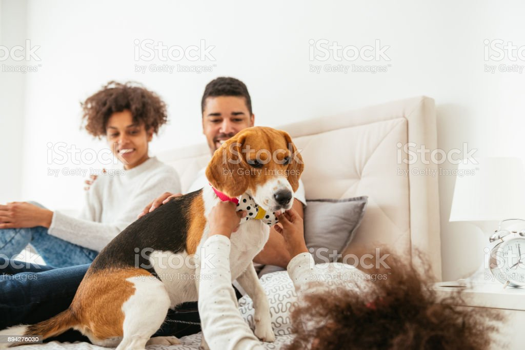 Playing with her dog stock photo
