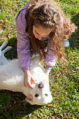 istock Playing with my dog in the meadow 1149428648