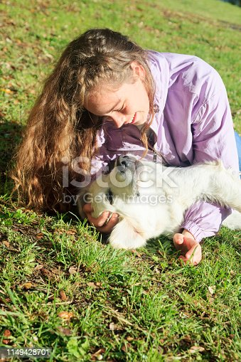 istock Playing with my dog in the meadow 1149428701