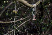 istock Playmobil figurine of a child having fun on a swing. 512351442