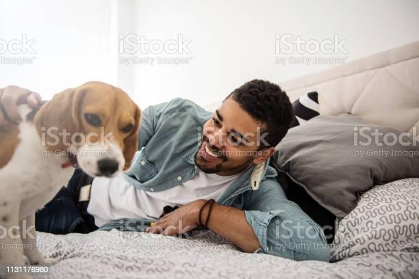 Playtime in bed picture id1131176980?b=1&k=6&m=1131176980&s=612x612&h=whqkflajcykfvebet8iyfc15jr th4h ix4uiqzvesy=