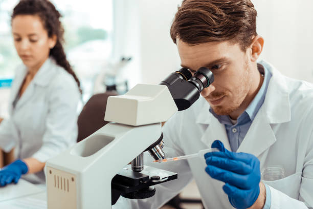 Pleasant bearded man studying a sample under the microscope Detailed research. Pleasant bearded man holding a test sample while studying it under the microscope microbiologist stock pictures, royalty-free photos & images