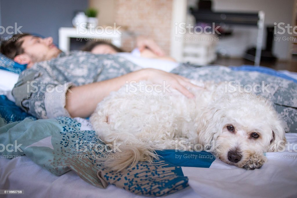 Please don't leave us! stock photo