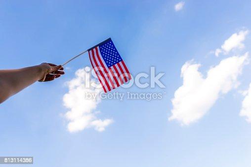 514069232 istock photo Pledging her allegiance 813114386