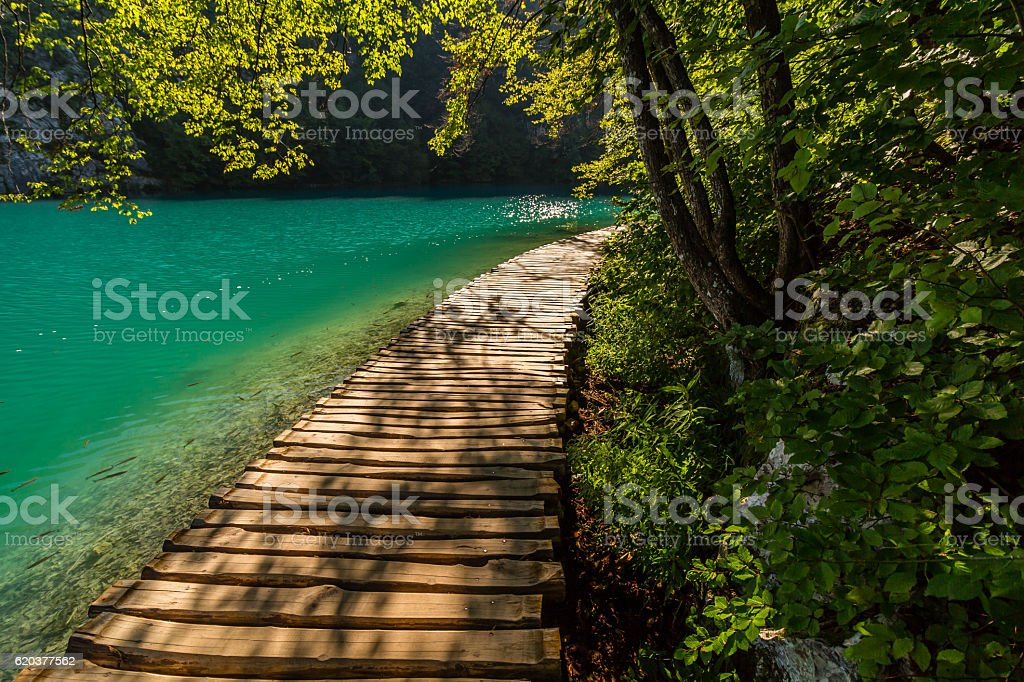 Plitvice lakes footpath foto de stock royalty-free