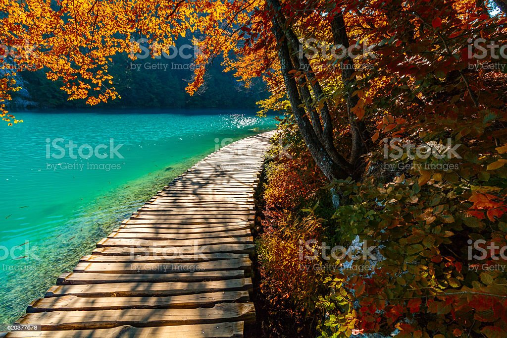 Plitvice lakes footpath foto de stock royalty-free