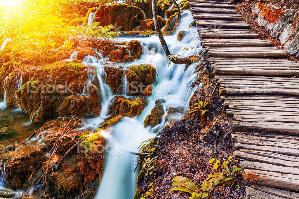 Plitvice lakes footpath zbiór zdjęć royalty-free