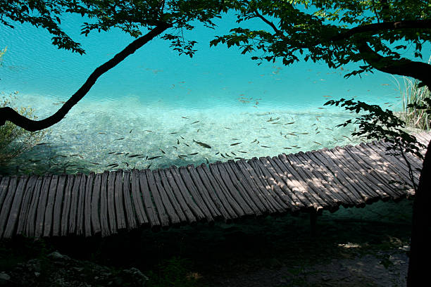 plitvice lakes national park - plitvice lakes stockfoto's en -beelden
