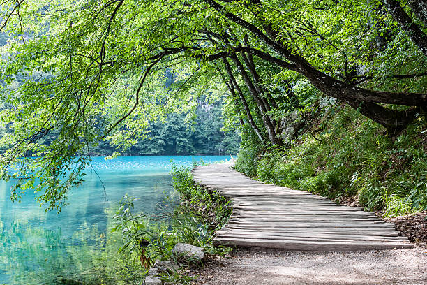 Royalty free nature pictures images and stock photos istock plitvice lakes stock photo voltagebd Images