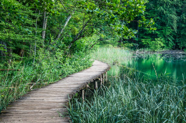 Nationalpark Plitvicer National Park, Kroatien – Foto