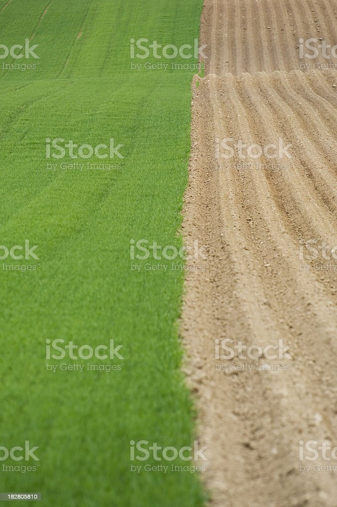 Ploughed and green fields royalty-free stock photo