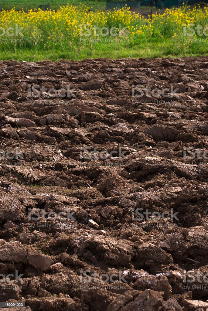 Ploughed Earth royalty-free stock photo