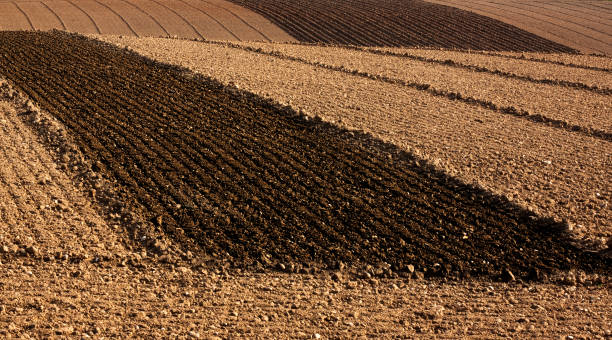 Ploughed Farm Field stock photo