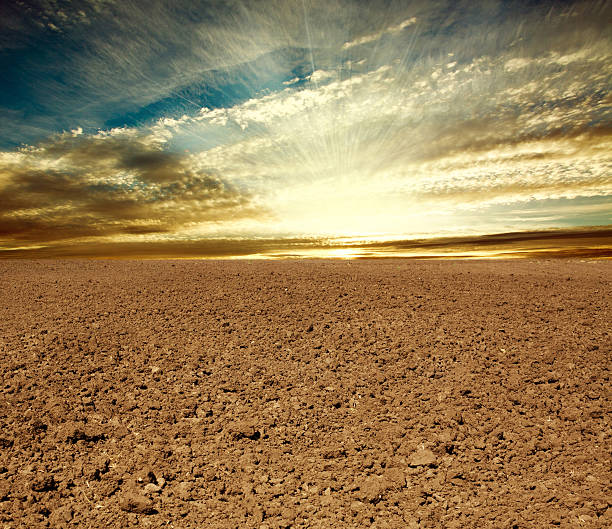 Ploughed farmland field in sunset stock photo