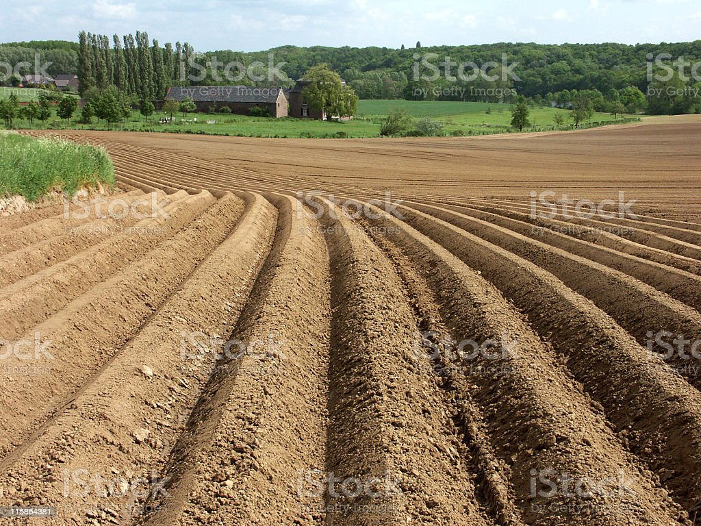 Ploughed farmland with furrows,ready for crops in springtime stock photo