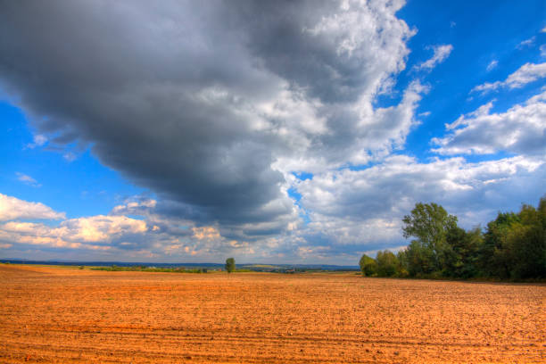 Ploughed field at late summer stock photo