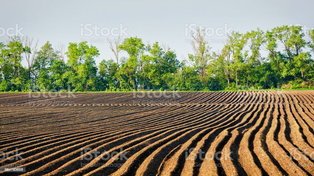 Ploughed field in Lower Silesia royalty-free stock photo