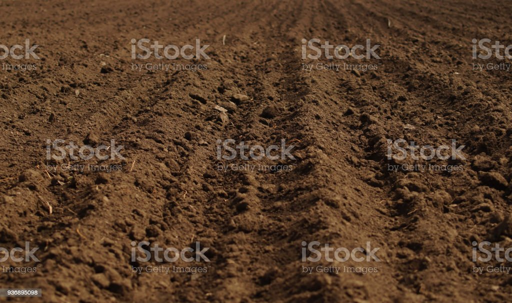 Ploughed field in spring prepared for sowing stock photo