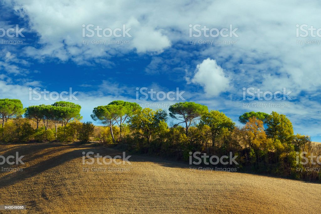 Ploughed field in Tuscany with cypress trees in the autumn stock photo