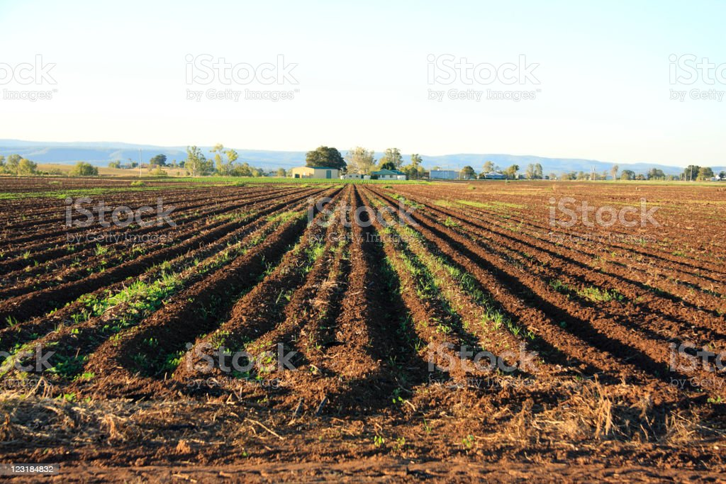 Ploughed field with farm buildings and hills behind royalty-free stock photo