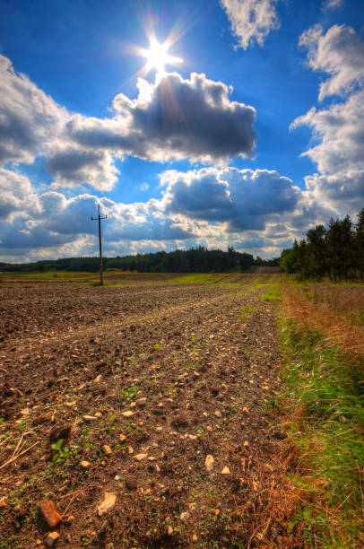 Ploughed stony field at late summer stock photo