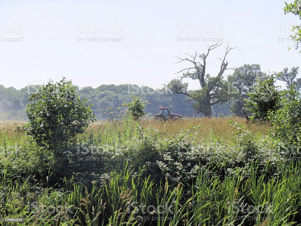 Ploughing en Croome Park foto de stock libre de derechos